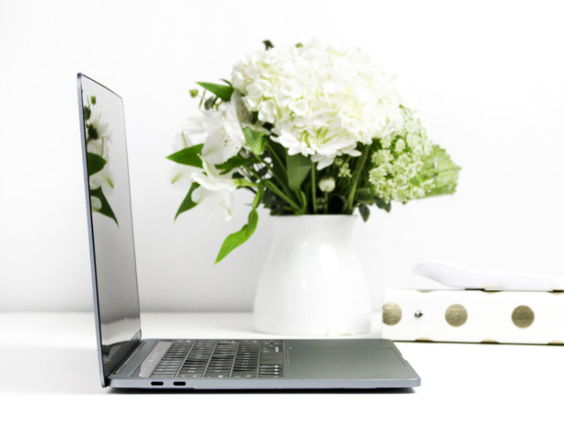 Laptop mit Pflanze - Pinterest Sperre wegen Spam