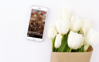 Der ultimative Pinterest Story Pin Guide 1